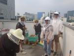 도시양봉을 하고 있는 어반비즈서울의 김지운, 유지호 청년일자리민관협력사업 참여자