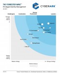 CyberArk – The Forrester Wave Privileged Identity Management