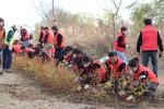 재규어랜드로버코리아 임직원들이 이촌한강공원 한강철교 하부에 나무를 심고 있다