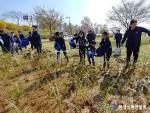 환경실천연합회가 한강잠원지구에서 진행한 나무심기 활동 현장