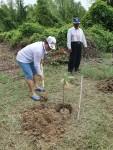 박종명 한국전력 기후변화대응처장이 미얀마 양곤에서 맹그로브를 식재하고 있다