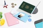 스마트 여권 제품