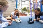 코딩 로봇 큐와 큐 앱을 이용하여 코딩을 하고 있는 아이들