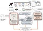 반려견 유선암 유전체 규명 과정
