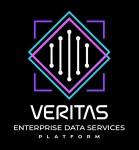 베리타스 엔터프라이즈 데이터 서비스 플랫폼