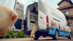 건국대가 현대자동차와 동물병원 반려견 헌혈카 캠페인을 진행했다