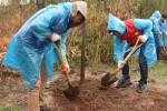 이촌한강공원에서 재규어랜드로버코리아 직원들이 봉사활동을 하고 있다