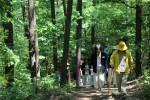 충주 깊은산속 옹달샘에서 진행되는 힐링 프로그램