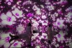 팀랩, 떨어지는 꽃의 우주 위에 뜨다. 2016~2018, 인터랙티브 디지털 설치, 무제한, 음향: 다카하시 히데아키