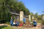 2019년 챌린지가든 '냥이의 정원산책'을 조성한 도시정원사