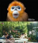 펜타클이 제작한 LGU+ 광고 캠페인이 국제 비즈니스 대상(IBA) '스티비 어워즈'에서 4개 부문 금상을 수상했다