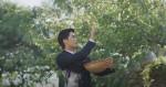 식스맨으로 분한 배우 성훈이 광양 홍쌍리 매실농원에서 매실을 수확하고 있다