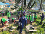 의성항 마을 주민들이 귤나무를 식재하고 있다