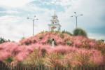 제주허브동산 핑크뮬리 종탑