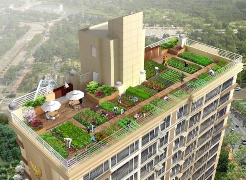 롯데건설, 입주민 위해 아파트 옥상에 텃밭 조성 - 뉴스와이어
