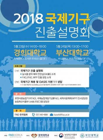 2018 국제기구 진출 설명회 포스터