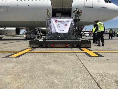 터키항공 카고가 서커스 현장에서 구출된 사자를 자연의 품으로 돌려보냈다