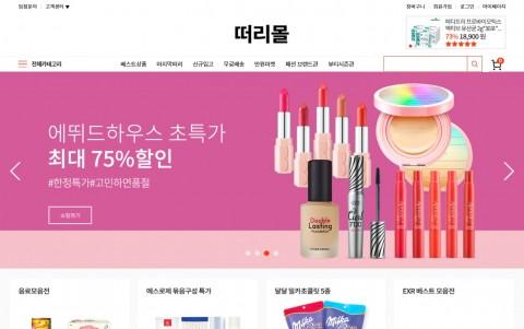 떠리몰 공식 홈페이지 캡처