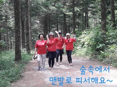 워크앤런, 27일 폭염 탈출 숲속 맨발걷기 행사 개최