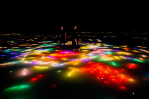 잉어춤과 사람에 의해 형성된 수면에 그리기.  Infinity teamLab, 2016~2018, 인터랙티브 디지털 설치. 음향: 다카하시 히데아키