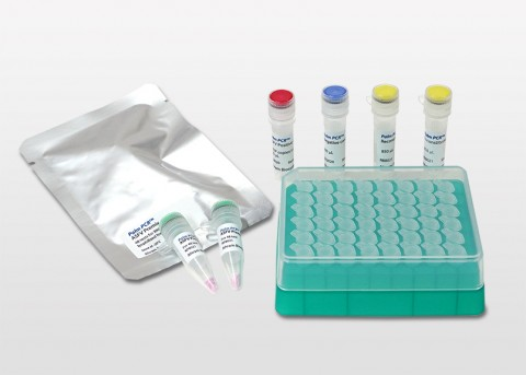 Palm PCR™ ASFV Fast PCR Kit