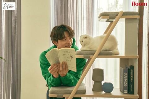 일룸 캐스터네츠 책장 캣타워에서 책을 읽으며 고양이와 시간을 보내는 공유
