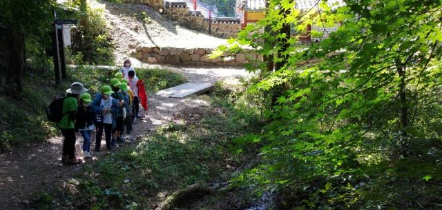 남한산성으로 먼 숲 소풍을 떠난 2020년 와숲 가을 활동