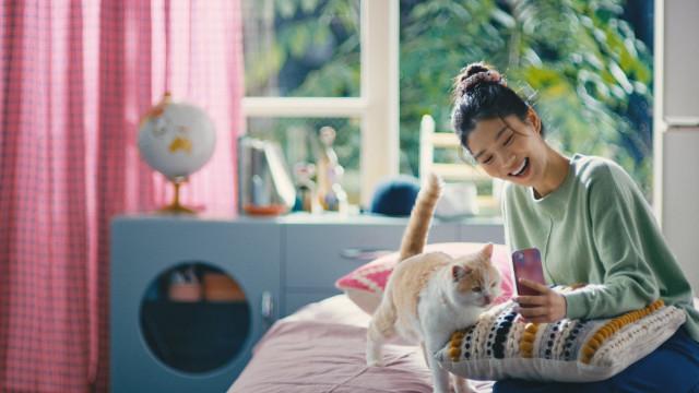 틴더를 통해 같은 취향의 집사 간의 설레는 만남을 갖게 된 실제 이야기를 담은 고양이 집사 편