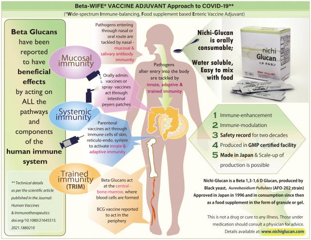 니치 글루칸은 네 가지 면역 체계, 즉 점막 면역, 적응 면역, 선천 면역 및 훈련 된 면역의 모든 경로를 통해 작용할 가능성이 있는 것으로 보고됐다. 새로운 베타 글루칸에 대한 연구는 현재의 Covid-19, 돌연변이 변종 및 미래의 전염병을 염두에 두고 인간 면역력을 높이는 방법을 찾는 데 필수적이다