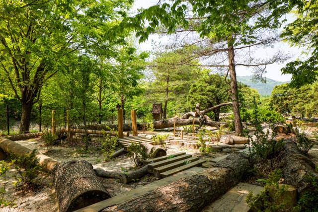 광릉숲의 풍부한 자연환경과 어우러진 어린이정원