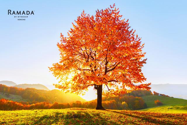 호텔 라마다 속초는 가을 단풍 시즌을 맞아 '어텀 스위트 패키지 패키지'를 출시했다