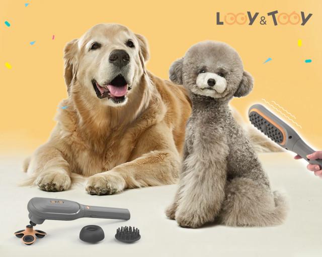 홈일렉코리아가 반려동물 전용 마사지기 브랜드 '루시앤토비'를 정식 론칭했다