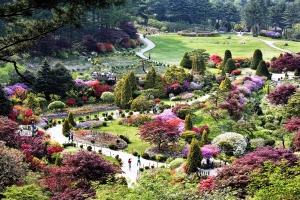 봄꽃명소 아침고요수목원, 다채로운 공연과 체험행사로 인기