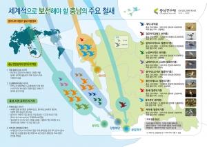 충남연구원이 4일 제작한 세계적으로 보전해야 할 충남의 주요 철새 인포그래픽 (사진제공: 충남연구원)