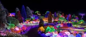 아침고요수목원이 실시하는 오색별빛정원전에서는 신년 맞이 소원 이벤트 대잔치를 하고 있다 (사진제공: 아침고요수목원)