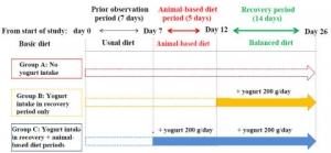 (도표1) 연구 프로토콜 (사진제공: Morinaga Milk Industry Co., Ltd.)