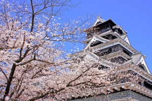 여행박사가 9일 오후 2시 홈페이지에서 실시하는 구구데이 이벤트를 통해 후쿠오카, 도쿄, 오키나와, 싱가포르, 태국 등 여행지 5곳을 최대 87% 할인된 가격으로 선보인다 (사진제공: 여행박사)