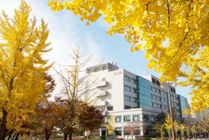 성균관대 의과대학이 올해 THE 세계대학평가에서 전임상, 임상의학 및 보건 분야 57위에 올랐다