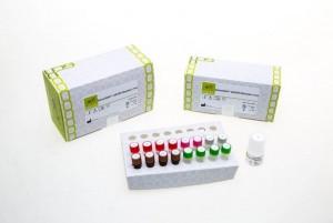 젠큐릭스의 GenesWellTM ddEGFR Mutation Test