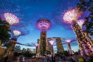 싱가포르 가든스 바이 더 베이