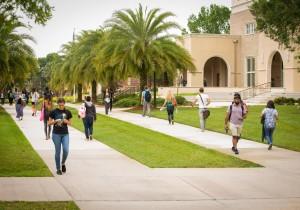 세인트리오 대학교 캠퍼스 학생들