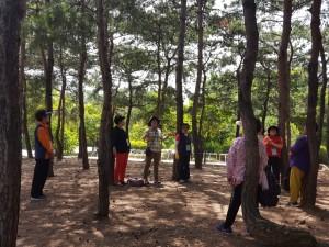 녹색교육센터의 시니어 생태예술 프로젝트 숲과함께 참가자