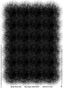 검은 밤, 비디오 나이트 전시회 포스터