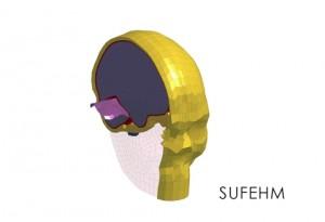스트라스부르대학 유한 요소 헤드 모델 - 머리 부상 예측 툴