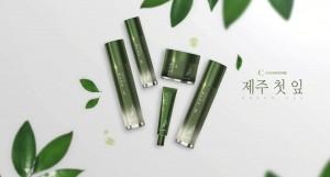 참존 제주 첫 잎 녹차 라인
