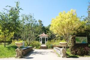 로맨틱한 분위기로 서울숲의 대표적인 포토스팟으로 유명한 설렘정원