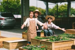 지역을 돌보는 꽃집 커뮤니티형 정원프로젝트 천안케어, 꽃천안
