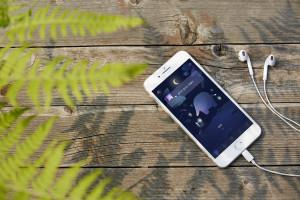 프리미엄 객실 아난티에서 만나볼 수 있는 명상 심리 앱 코끼리
