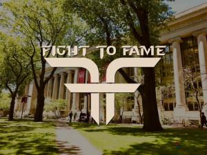 Fight To Fame 블록체인의 새로운 모드가 주목 받고 있다