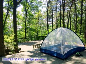 신구대학교식물원이 코로나19로 국내 여름휴가를 계획하는 시민을 위해 2020 SUMMER 체험프로그램을 제안한다